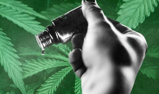 Conversando com meu filho sobre cannabis