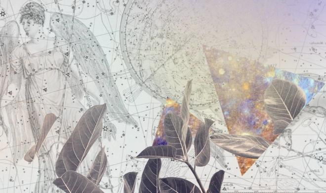 Horóscopo de setembro | É hora da faxina, interna e externa!