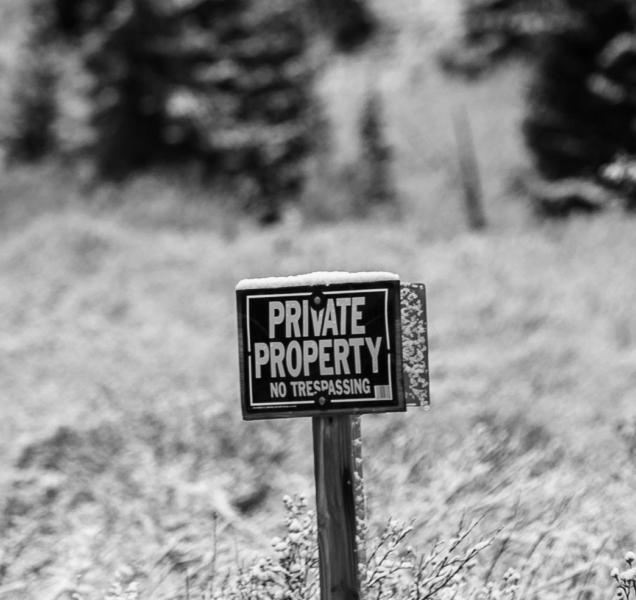 #213 | Privatização: sim ou não?