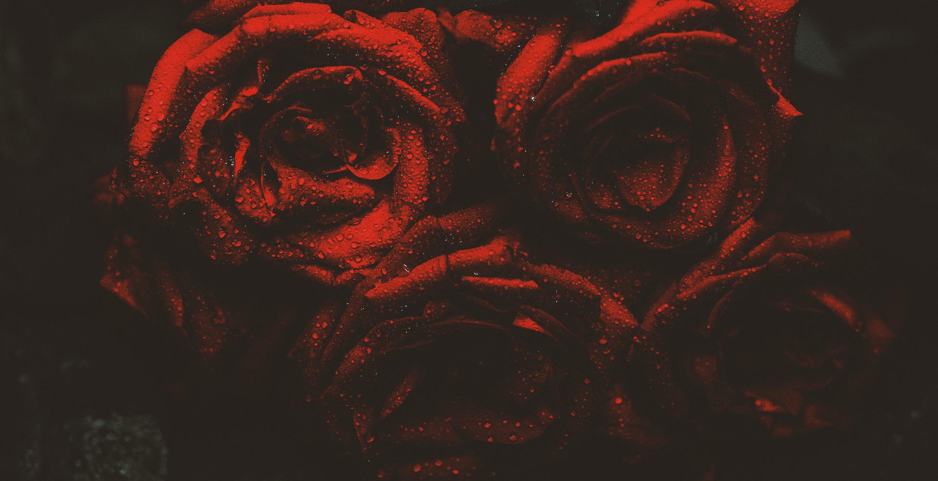 #121 | O caso da gótica suave