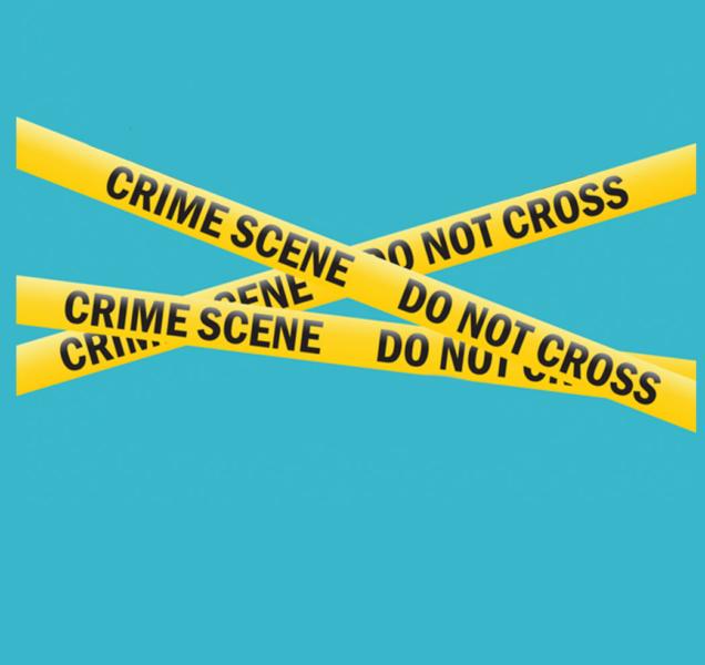 Profissionais do crime