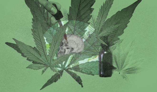 Tudo sobre o boom do CBD, a molécula da maconha que não dá barato e chega em breve às farmácias brasileiras
