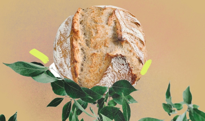 O milagre da 'pãodemia'