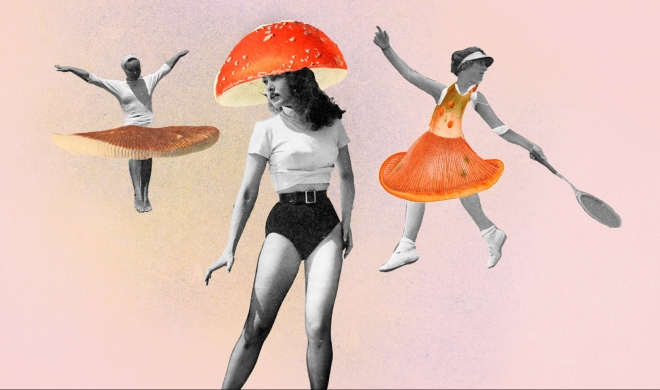 Efeito mushroom: futuro da moda está nos cogumelos