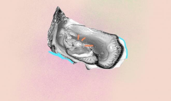 Quando a idade importa: testamos o primeiro autoexame que monitora nossa reserva ovariana